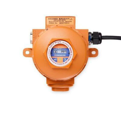 Picture for category Crowcon Sensors & Parts